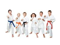 KIDS KARATE MARTIAL ARTS CLASS!!!