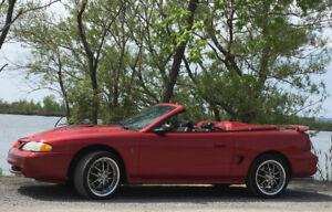 Mustang COBRA SVT 1998 décapotable  93,000km   $9,900