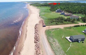 Private Treed Central Cottage Lot 500' to White Sandy Beach.