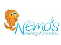 Level 3 Nursery Practitioner
