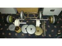 Workout Weights barbell Long Bar, Dumbbells, Triceps Bar