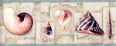 Seashell Border - Seashell Blue Beach Ocean Seashore Coastal Nautical Bathroom Wallpaper Border