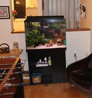 30 gallon aquarium with stand and accessories