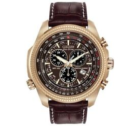 Citizen Eco-Drive Perpetual Chronograph Brown Strap