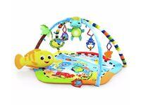 Baby Einstein Rhythm Reef Play Gym