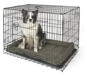 Searching for cages, toys and accessories for animals.