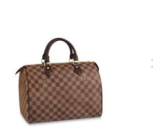 Brand New Louis Vuitton Purse
