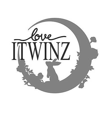 ITWINZ