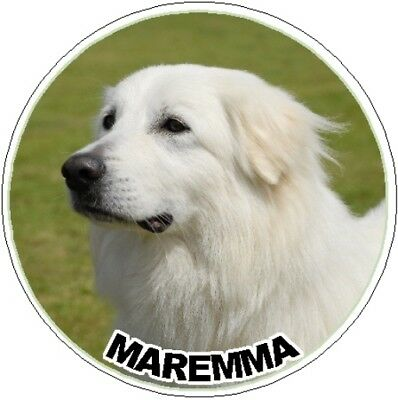 MAREMMA SHEEPDOG ON BOARD Car Sticker By Starprint