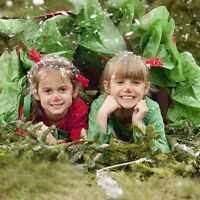Kids seasonal photography