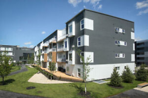 3 BDRM for 6 month sublet - Tuxedo Point