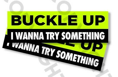 "Funny Bumper Stickers -BUCKLE UP I WANNA TRY SOMETHING - SET OF 2 - 8"" wide #813 for sale  Shipping to Canada"