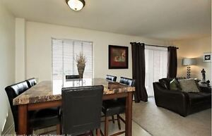 Renovated Two Bedroom for Nov - Near Northland Mall London Ontario image 4