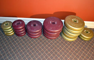 Barbell & Dumbell workout weights