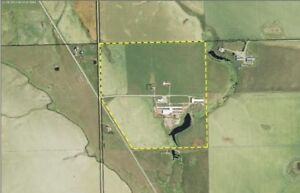 South West Alberta - 150 Acres with 238,070 sq.ft. Barn Complex