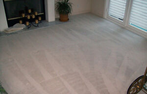 CARPET STEAM CLEANING - UPHOLSTERY -TILE AND GROUT Kitchener / Waterloo Kitchener Area image 4
