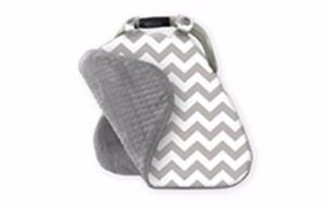 Car Seat Canopy- used but clean