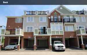 New Large Townhouse (2BD)- Dundas/Upper Middle (2 Car Parking)