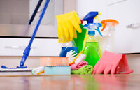 BEST CLEANING SERVICE FOR THE FALL AT THE BEST PRICE