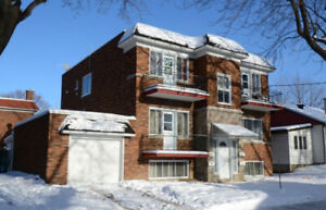 FULLY RENOVATED 3 1/2 FOR RENT @ Saint-Laurent- JULY 1