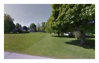 OWN THIS Remarkable 16,117.2 Sq. Ft Land in Dresden!