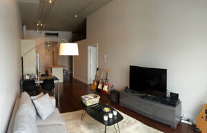 Fully Furnished Upscale Loft in TMR / Loft meuble a Mont-Royale