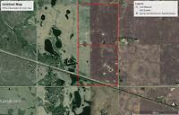 Two 1/4's of Highly Productive Farmland Near Buchanan SK.