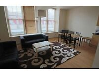 Beautiful and large one bedroom apartment near the Reading town center and staation