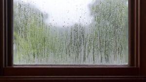 Foggy glass? Condensation?