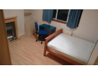 Massive Double with sofa in Residential Area - Central Line