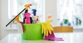 House cleaner (domestic cleaning, ironing)