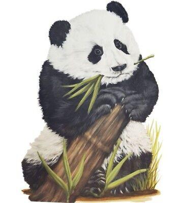 Tatouage Panda  Dry Rub Transfer