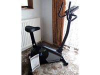 Rodger Black Gold Magnetic Exercised fitness bike. **LCD screen broken**