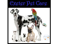 Exeter Pet Care - Pet Sitting, Pet Boarding, Dog Walking & Day Care. Christmas & Holiday Bookings