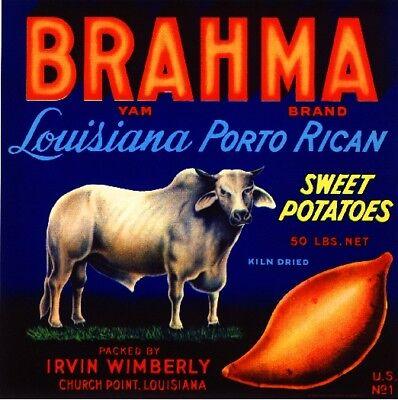 Church Point Louisiana Brahma Sweet Potato Yam Yams Vegetable Crate Label Print