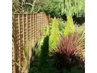 4 seasons fencing/landscaping