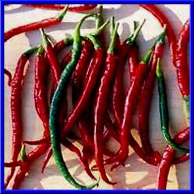 Mexican Pepper -  Mexican Finger Hots Pepper Seeds! Plants get loaded with peppers! COMB. S/H!