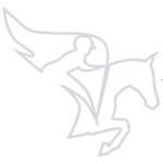 Pegasus Equestrian