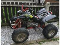 Quadzilla R100 quad