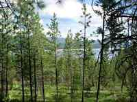 RV Lots for Sale - Lake Koocanusa, Montana Wild Resort