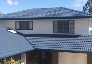 Roof painting and cleaning ( free quote , good price ) Glen Alpine Campbelltown Area Preview