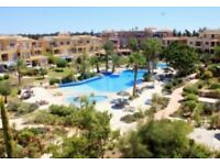 Travel partner / flatmate wanted for Cyprus relocation