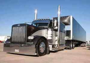 Looking For a Peterbilt 379 or kenworth W900L