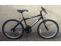 "Bike/Bicycle.BOYS RALEIGH "" MAX "" MOUNTAIN BIKE.SUIT 9-12 YEARS"