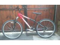Coyote hardtail mountain bike
