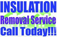 Do you need Insulation Removed