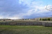 Millet, Alberta, Wetaskiwin County, investment, horse property