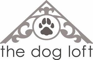 Puppy Head Start at The Dog Loft