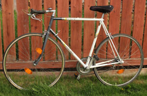 lugged Classic Raleigh Equipe Road bike restored and serviced