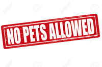 some pets no longer allowed in Guelph